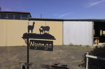 Metal Art - Alpaca and Sheep Sign Post